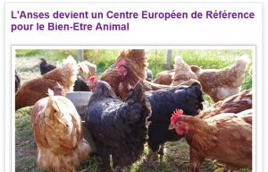 Anses devient centre européen de référence pour le bien-être animal