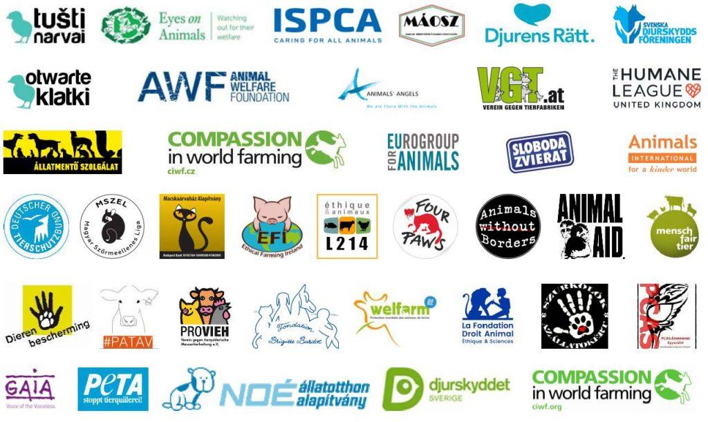 37 ONG signataires de la lettre à la Commission européenne et au Conseil de l'Europe