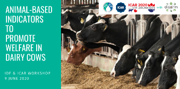 IDF Workshop on animal-based indicators to promote welfare in dairy cows
