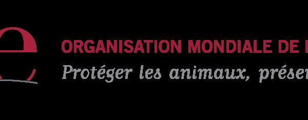 Logo de l'OIE